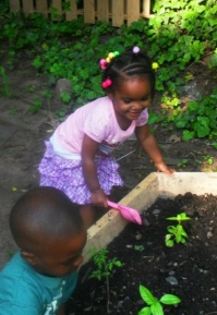 """""""As a teacher, each child is like a plant,"""" says Geraldine Elliott, a Hamden family child care provider. """"Nourish it, take patience with it, encourage it."""" Over time, she says, children """"open up, just like a sunflower."""" Click here to read more."""