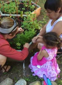 maria garden project fb